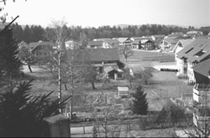 Hubel-1993